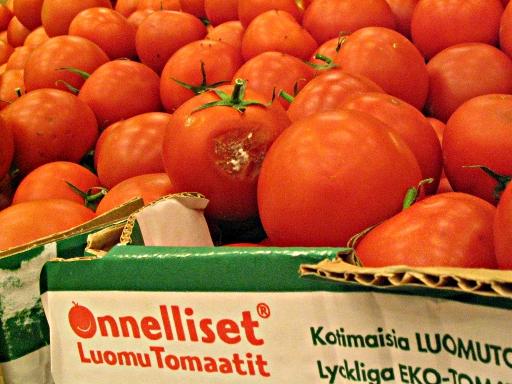 Onnellisia Luomu Tomaatteja